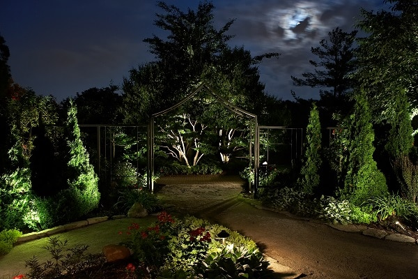 outdoor landscape at night with lighting